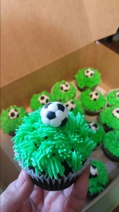 Soccer theme cupcakes!  Soccer balls made out of fondant.