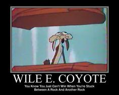 Wile E. Coyote stuck between two rocks