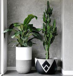 Home Decoration Plants Flower Pots 46 Ideas Painted Plant Pots, Painted Flower Pots, Concrete Pots, Concrete Crafts, House Plants Decor, Plant Decor, Diy Garden Projects, Diy Garden Decor, Flower Pot Design