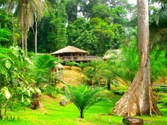 OVENG LODGE CAMEROUN