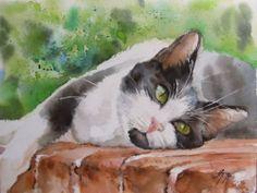 cat  -  watercolour painting by Anke Treuheit