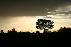 African Sun by Zac Bloom, via 500px