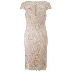 Lipsy V I P Lace Cutout Shift Dress (€64) ❤ liked on Polyvore featuring dresses, pink lace cocktail dress, lace overlay dress, lace cut out dress, lace dress and short sleeve dress