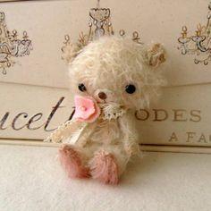 tiny teddy.