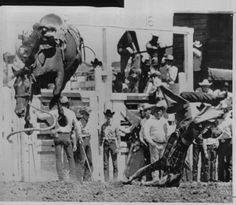 1000 Images About Cowboy Up In Memory Of Dad On Pinterest Rodeo Bull Riders And