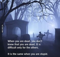 Can you beat this insult? - 9GAG