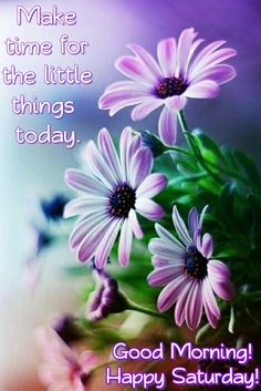 Good Morning! Happy Saturday! 'Make time for the little things today.' #goodmorning #goodvibes #good #morning #happysaturday #happy #saturday #love #quotes #happiness #life #saturdaymorning #saturdays #gmw #morningpost #saturdays #gm #meme #memes #beauty #nature #quotes #quote #riseup #wakeup #flowers #purple #beauty #nature #white