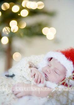 christmas photo.