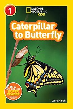 National Geographic Readers: Caterpillar To Butterfly By .