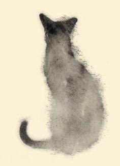 'Chat de dos' Aurore de la Morinerie
