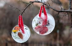 These DIY sun catchers always bring a smile to our faces. these lovely ones are made from bits of nature, and are so beautiful hanging outside windows and from trees in our winter garden! Kids Crafts, Craft Activities For Kids, Winter Activities, Arts And Crafts Projects, Projects For Kids, Craft Ideas, Nature Activities, Sensory Activities, Fun Ideas