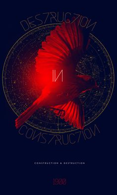 Destruction / Construction