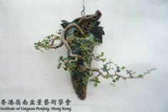 Wong-Chau-Shing-Penjing-421