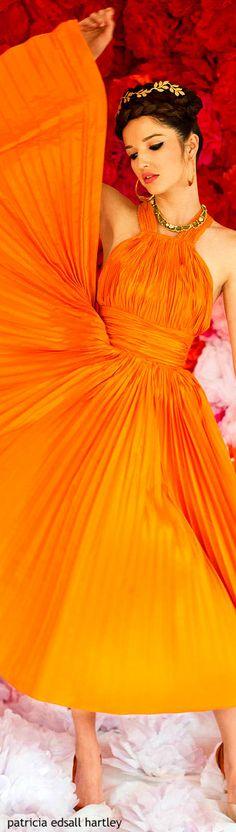 www.2locos.com Orange Twist, Orange Color, Orange Brown, Yellow Maxi Dress, Jaune Orange, Orange You Glad, Pink Gowns, Orange Fashion, Orange Crush