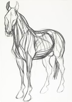 Jo Taylor: War Horse II Study Campden Gallery, fine art, Chipping Campden, camden gallery, contemporary, contemporary arts, contemporary art, artists, painting, sculpture, abstract painting, gloucestershire,  cotswolds, painting for sale, artwork for sale, modern art gallery, art exhibitions,arts gallery, gallery art, art gallery UK