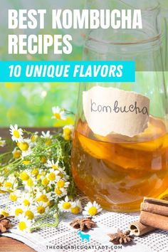 Kombucha Flavors Recipes. Once you get down the basics of how to make kombucha, it's time to try out different homemade flavors recipes. There are so many health benefits to Kombucha and you can make some delicious homemade drinks with a tea, a Scoby, and your favorite seasonal flavor combinations. Refreshing lemon, fall spice, yummy orange cranberry, lavender, hibiscus and more. Check out these recipes with all the steps you need to make yummy DIY kombucha all year long. Best Kombucha, Diy Kombucha, Kombucha Flavors, Kombucha Recipe, Kombucha How To Make, Probiotic Drinks, Fermented Foods, Recipes For Beginners, Gut Health