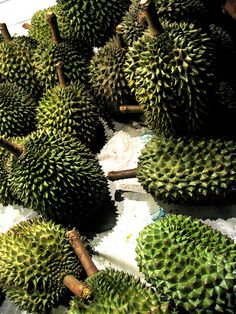Menu | Durian