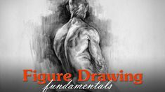 Glenn Vilppu Figure Drawing Book New Figure Drawing Fundamentals Introduction Drawing Lessons, Drawing Techniques, Life Drawing, Painting & Drawing, Figure Drawing Books, Body Reference Drawing, Anatomy Reference, How To Shade, Art Tutorials