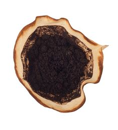 Used coffee grounds in a filter isolated on white background Bokashi, Uses For Coffee Grounds, Household Chores, Good To Know, Diy And Crafts, Food And Drink, Ale, Hacks, Cleaning
