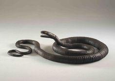 清水三年坂美術館 明治時代の超絶技巧「蛇」 これ全部稼働するんです!凄いです!金属の蛇がグネグネと曲がりくねります! だけど製法は、現在わからないそうです、明治時代のロストテクノロジーです