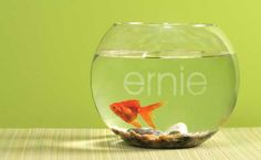 #Frosted Glass Vinyl Fish Bowl. So cute!