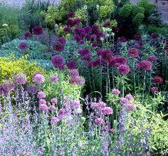 Beth Chatto - Woodland Garden