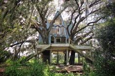 木々が突きささった優雅で上品な家
