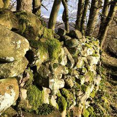 https://flic.kr/p/rupkdo | Beautiful dry stones fences in Cumbria!  #upsticksandgo #cumbria #drystone #fence #county #countryuk #uk #travel #travellingtheworld #michfrost