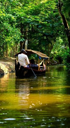 Sail on the backwaters of Kerala   10 Experiences not to miss while in India