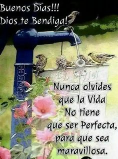 Morning Greetings Quotes, Good Morning Quotes, Good Day Wishes, Spanish Greetings, Good Morning Inspiration, Morning Thoughts, Bless The Lord, Blessed Quotes, Funny Phrases