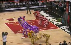NBA Chinese Lion Dance at United Center Arena