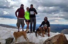 A dog saves the lives of 13 hikers after a lightning strike (3 HQ Photos)