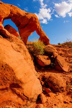 Arrowhead Arch  Valley Of Fire State Park Overton, Nevada