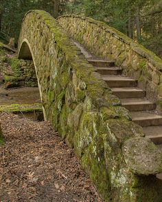 Mossy Bridge at Hocking Hills State Park