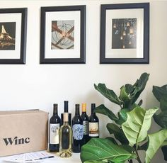 Where do you keep your wine when it arrives? A wine rack, bar cart, on top of the fridge? Show us your set up! We love seeing our wines in your homes. No wine? Click the link in bio to get started and we'll make sure you are always stocked!  (pc: @grenvillesociety)