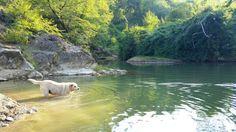 River, Umbria. Italy.