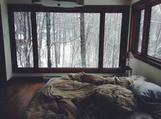 I want this so bad. A beautiful big  curtainless window with a scenic woodland view. Hardwood floors. Minimalistic decor. A bed my hot chocolate pretty lighting and a book or two or three