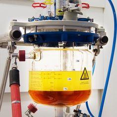 Bioplastic – greener than ever [New Materials: http://futuristicnews.com/tag/new-material/]