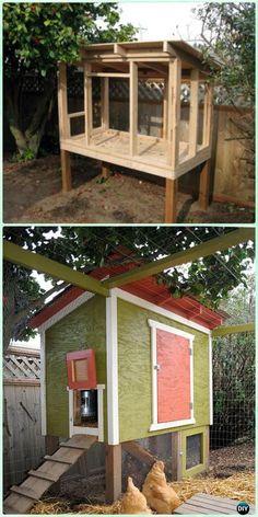 DIY Urban Chicken Coop Free Plan