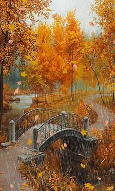 Autumn day with rain, lightning and a bridge ~✿Ophelia Ryan✿~ (VL-save Beautiful Gif, Beautiful Places, Beautiful Pictures, Fall Pictures, Nature Pictures, Rain Photography, Landscape Photography, Winter Gif, Foto Gif