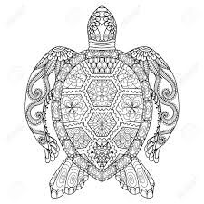 """Résultat de recherche d'images pour """"tortue dessin"""""""