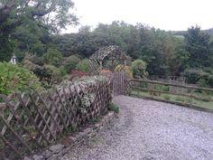 Sweet Chestnut trellis fencing. Trellis Fence, Sweet Chestnut, Concrete Wall, Sidewalk, Fencing, Country Roads, Rustic, Nature, Den