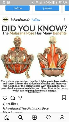 The Malasana Pose Stretches the Thighs, Groin, Hips, Ankles, and Torso. It also improves the Colon with Elimination increases Circulation and Sexual Energy. Health And Fitness Articles, Fitness Tips, Health Fitness, Back Exercises, Stretching Exercises, Malasana Pose, Circulation Sanguine, Yoga Moves, Abdominal Muscles