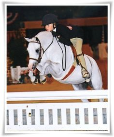 go, small pony, go! (Monroe, by Penrhyn Sporting Chance)