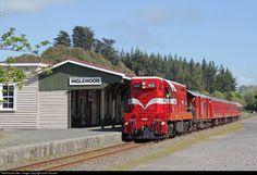 Net Photo: 1431 Steam Incorporated EMD at Inglewood, New Zealand by John Russell South Pacific, Pacific Ocean, State Of Arizona, Train Pictures, Old Trains, Train Station, Locomotive, Plymouth, New Zealand