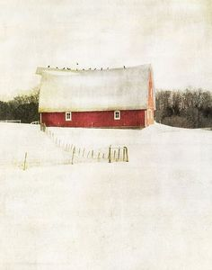 Milk and Berries by Jamie Heiden