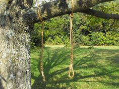 Rope tree swing limb saver hanging rope by Quarrydesigns on Etsy