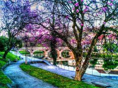 Boa tarde :D Aproxima-se mais um fim de semana soalheiro de uma Primavera antecipada. Nada melhor do que as margens do Vez em Arcos de #Valdevez para uma caminhada retemperadora  numa paisagem de sonho - http://ift.tt/1MZR1pw -