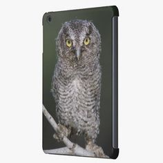 Love it! This Eastern Screech-Owl, Megascops asio, Otus 2 iPad Mini Retina Case is completely customizable and ready to be personalized or purchased as is. It's a perfect gift for you or your friends.