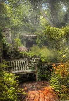 contemplation corner by Mark Savad , Photographer  I think I'd like to find this place... yes... I think so.....